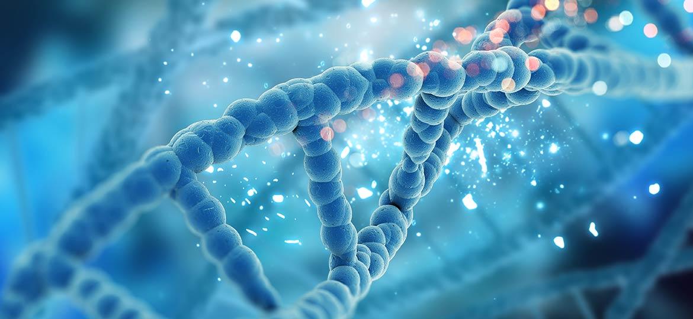 DNA fetale o Harmony test a padova