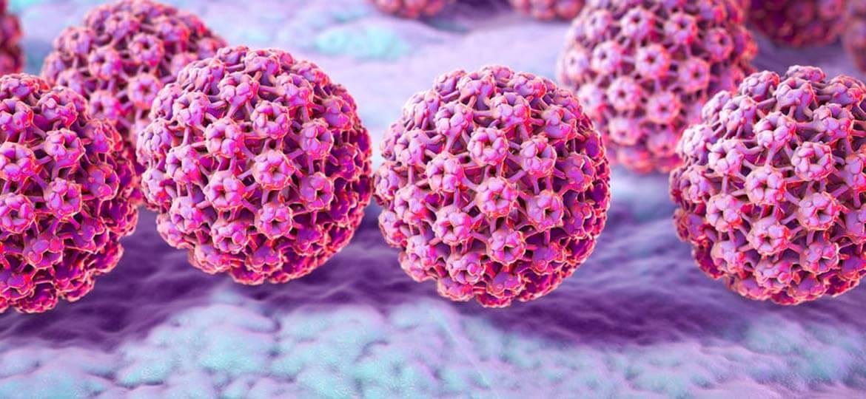 HPV DNA test Padova Studio Ambrosini